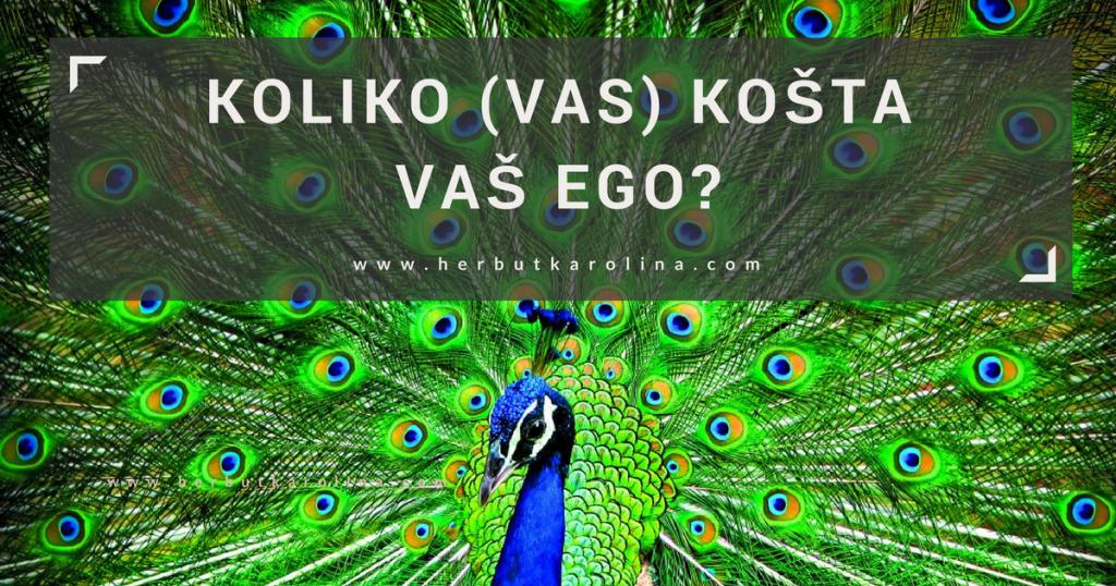 Koliko vas kosta vaš ego